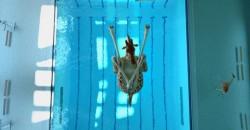 high diving giraffe
