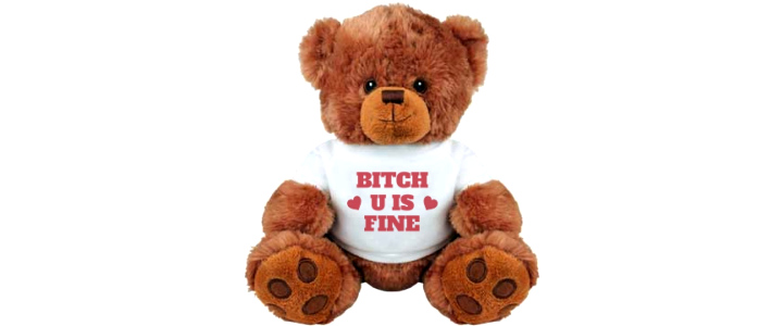 Bitch U Is Fine Girlfriend Gifts: Medium Plush Teddy Bear