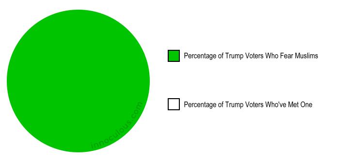 Trump Voter Pie Chart