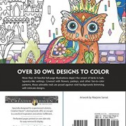 Creative-Haven-Owls-Coloring-Book-Adult-Coloring-0-0
