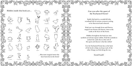 Enchanted Forest An Inky Quest Amp Coloring Book