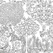 Enchanted-Forest-An-Inky-Quest-Coloring-Book-0-5