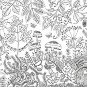Enchanted-Forest-An-Inky-Quest-Coloring-Book-0-7