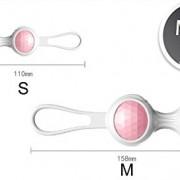 Fllt-Ben-Wa-Balls-Female-Vagina-Recovery-Toys-0-0