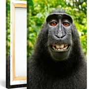 MONKEY-SELFIE-Premium-Canvas-Art-Print-16×24-inch-Large-Animal-Wall-Art-Deco-Canvas-Picture-Stretched-on-Wooden-Frame-as-Modern-Gallery-Artwork-e6625-0-0
