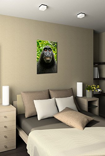 monkey selfie premium canvas art print 1624