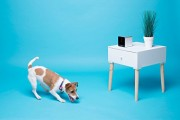 Petcube-Interactive-Wi-Fi-Pet-Camera-0-9