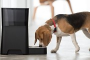 Petnet-SmartFeeder-Automatic-Pet-Feeding-with-your-iPhone-0-4