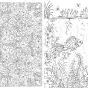 Secret-Garden-An-Inky-Treasure-Hunt-and-Coloring-Book-0-10