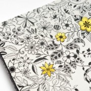 Secret-Garden-An-Inky-Treasure-Hunt-and-Coloring-Book-0-2