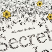 Secret-Garden-An-Inky-Treasure-Hunt-and-Coloring-Book-0-6