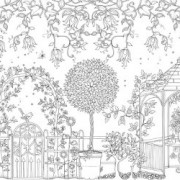Secret-Garden-An-Inky-Treasure-Hunt-and-Coloring-Book-0-8