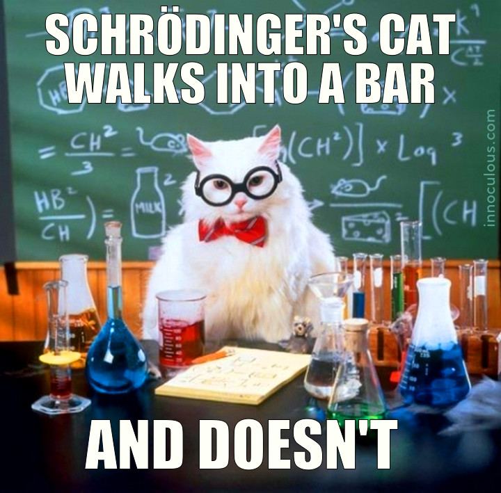 SCHRÖDINGER'S CAT WALKS INTO A BAR