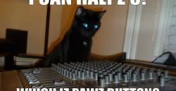Meow Mix Pawz Button