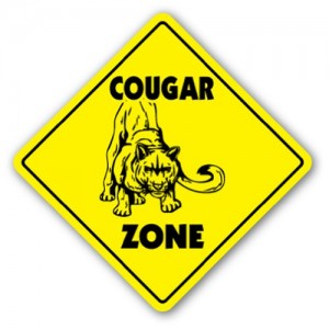 COUGAR-CROSSING-Sign-xing-gift-novelty-cat-milf-hunter-mom-fast-0