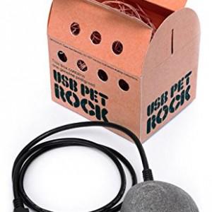 USB-Pet-Rock-0